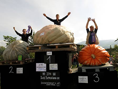 Neuer Weltrekord im Kürbiswiegen - New World Record Pumpkin Weigh-Off